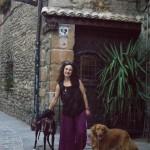 Concierto con perro en Pamplona