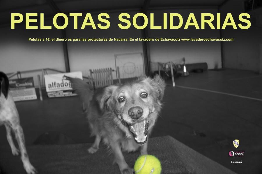 pelotas solidarias cartel