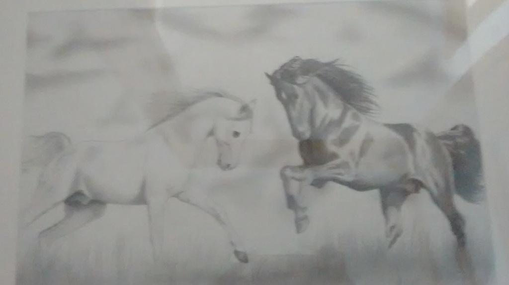 Claudia Arraiza dibujo de mascotas